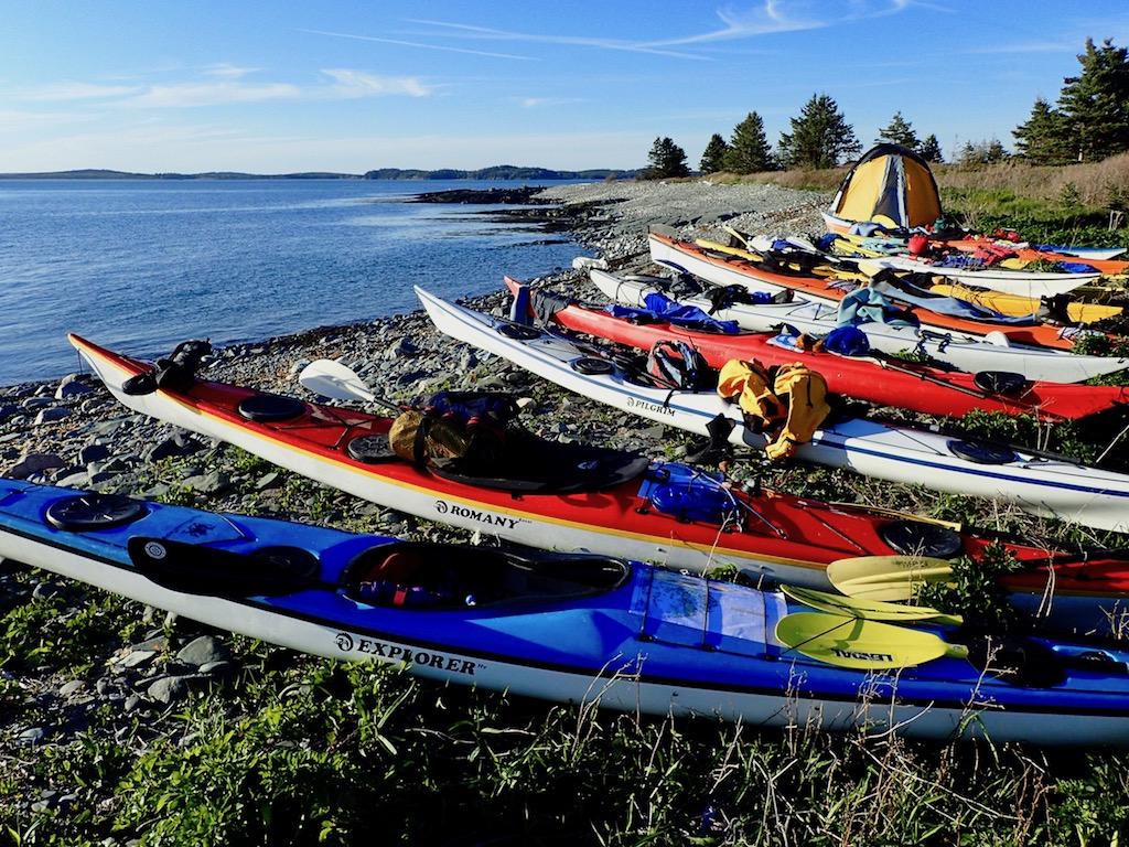 NDKs on Halifax Island