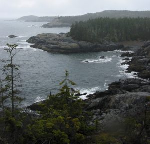 coastline of Downeast Maine