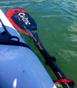 paddle in water attached to contact tow