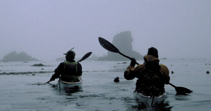 kayakers expeditioning in Antarctica