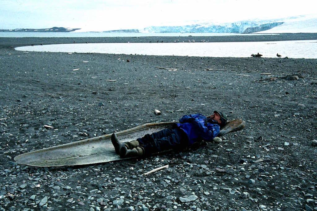 man resting on whale bones in Antarctica
