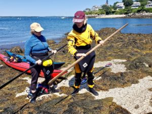 Learning to use a Greenland paddle